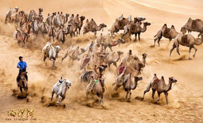 【愛旅行】全國5a級景區——內蒙古