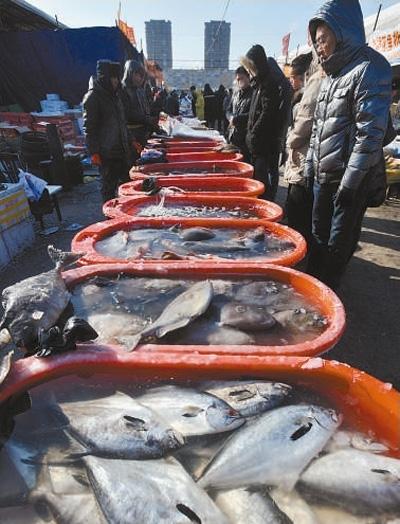 沈阳的海鲜市场依然热闹.资料图片