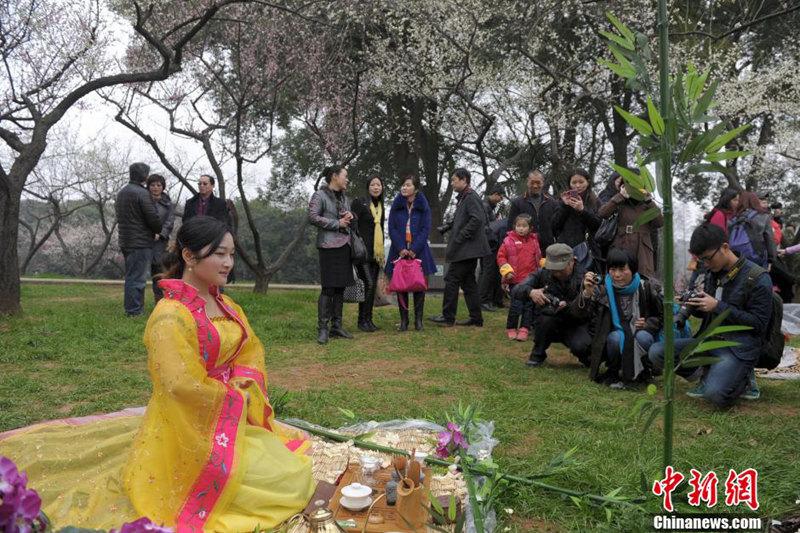 高清:武汉美女着古装展茶艺+引市民围观【5】