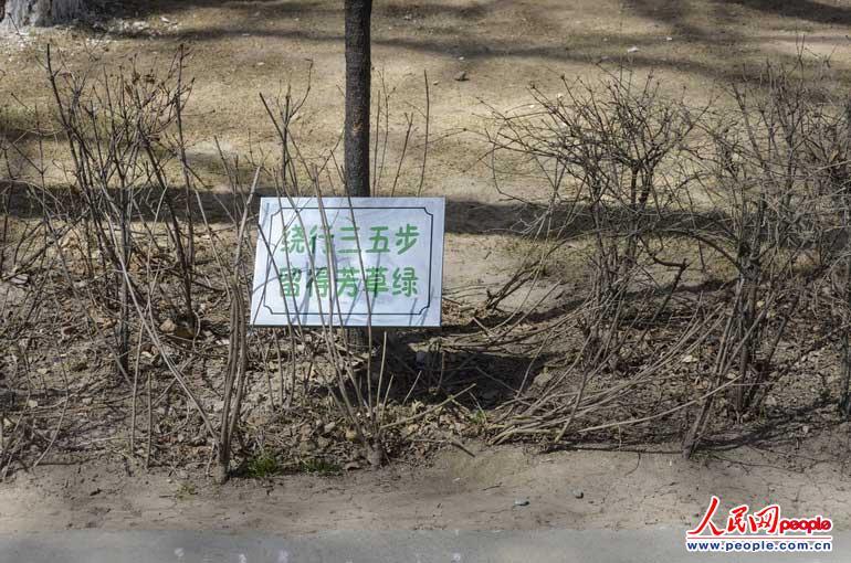 青海省西宁市人民公园内的踏青乱象(高清)【4】