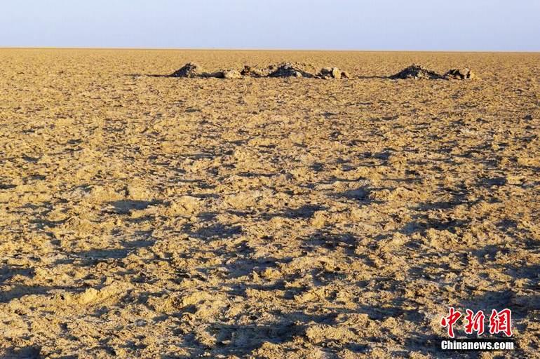 图为罗布泊湖底典型地貌—无限单调的盐碱壳。西海清歌 摄