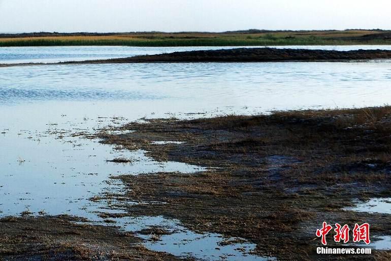 图为罗布泊涌泉边上的湖泊,据说是疏勒河从地下流过来的水。罗布泊的中心地带已经完全干涸,但罗布泊周边还是有水存在,比如在罗布泊东向一片低洼地的中心位置,就有涌泉和湖泊,以及成片的芦苇。西海清歌 摄