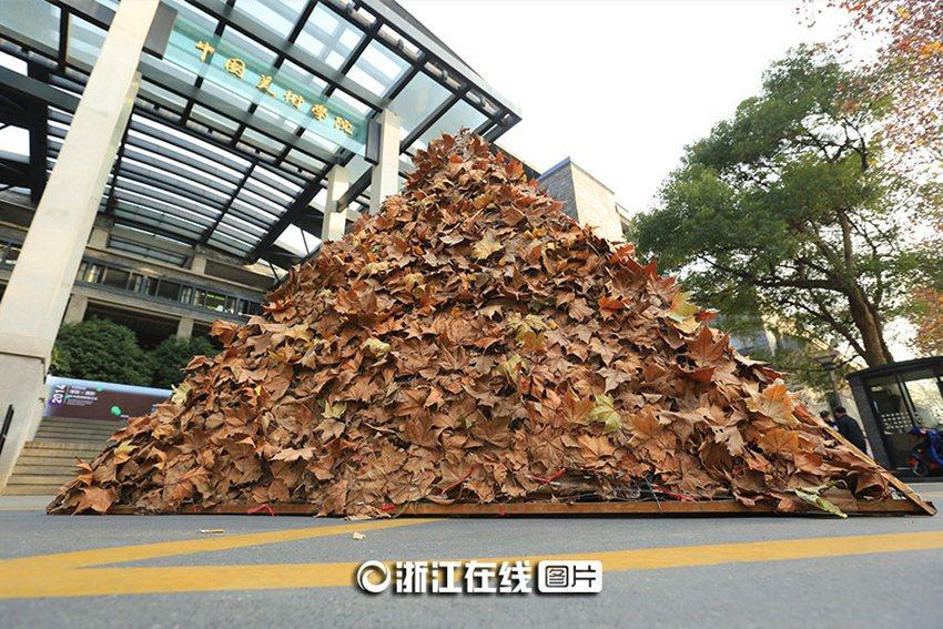 """高清:杭州街头惊现落叶""""金字塔""""【2】--旅游频道_权威图片"""
