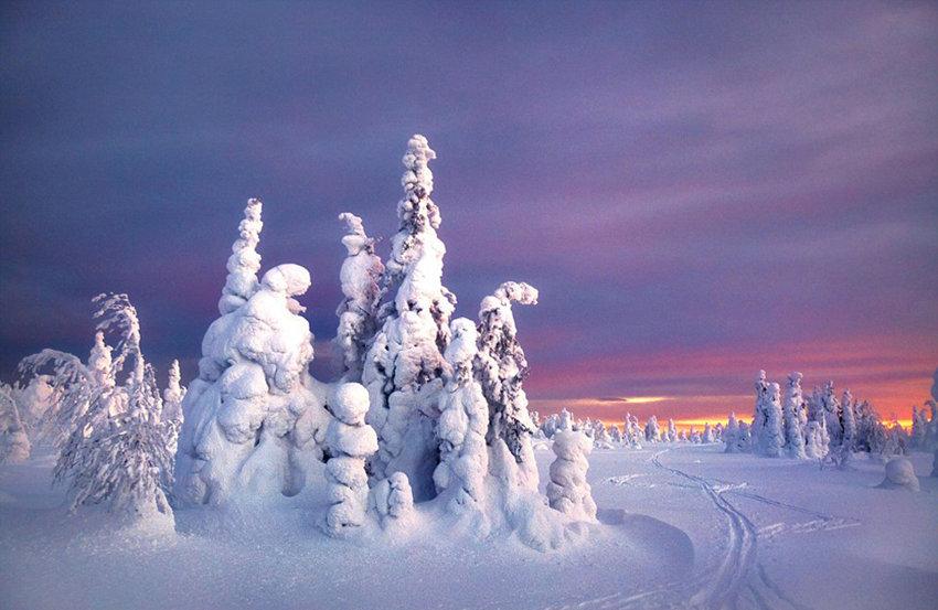 据英国《每日邮报》12月22日报道,俄罗斯45岁摄影师谢尔盖玛库瑞穿越俄罗斯彼尔姆边疆区和斯维尔德洛夫斯克州,拍摄到一组像是科幻电影中才会出现的奇幻场景,各种各样被冰冻的树不堪冰雪负重垂下腰肢,这些树木被冻住后,在蓝色天空的映衬下,呈现出诡异、奇妙的姿势,亦妖亦仙、美妙绝伦。 据悉,这些照片的拍摄地位于俄罗斯西部人烟稀少的乌拉尔山脉地区,那里的温度在冬天可以低至零下35。玛库瑞称,他12岁时在该地区第一次看到这些奇景,产生了分享的念头。他经常要花费数小时才能拍摄到一个完美的镜头,但他认为非常值得。(米粒