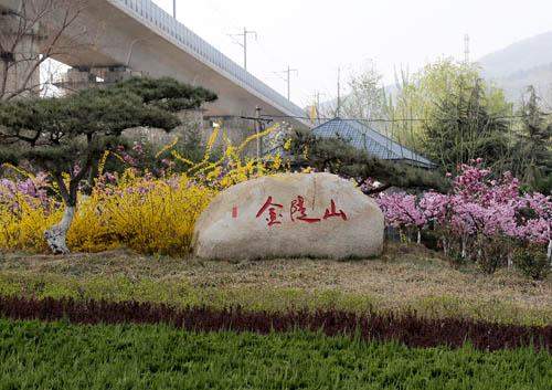 泰安二中校园风景手绘