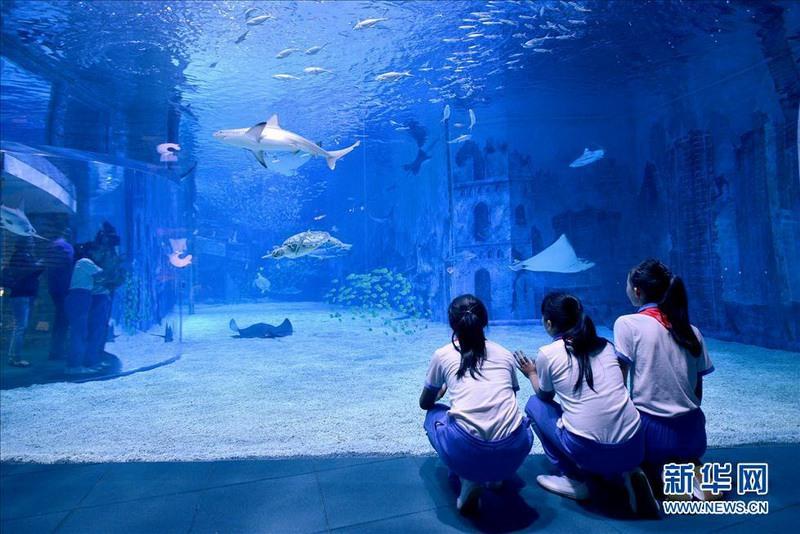 世界内陆最大,设施最先进的海洋馆,集观赏,科普教育和休闲娱乐为一体