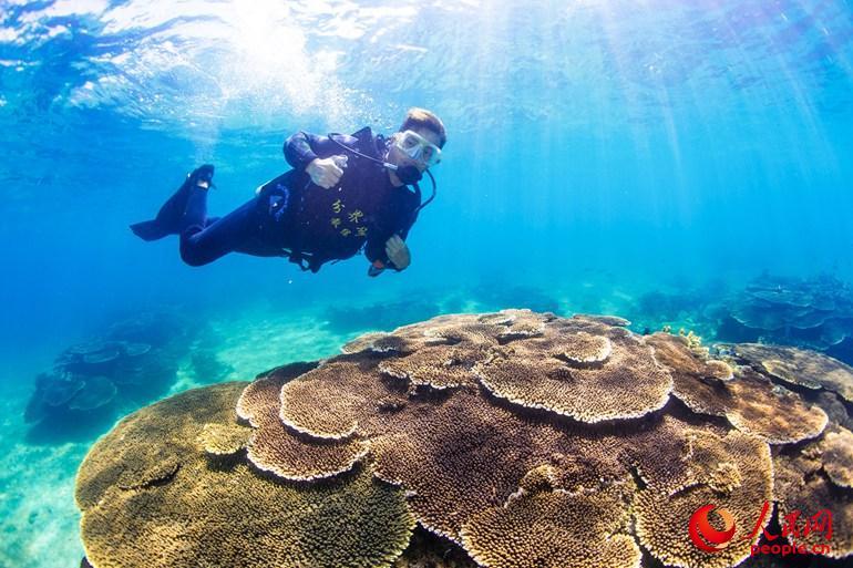 国内首部海底微电影在分界洲岛拍摄(高清)