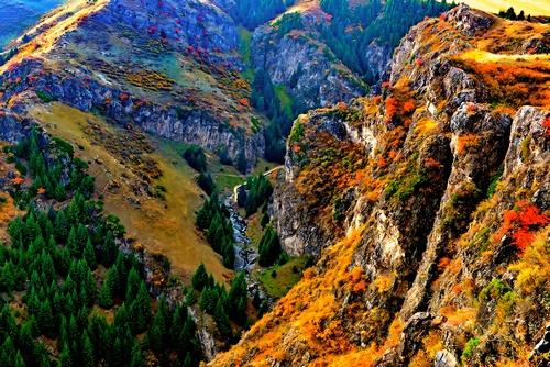 旅游频道_权威全面报道旅游 专题 新疆奇台县  分享