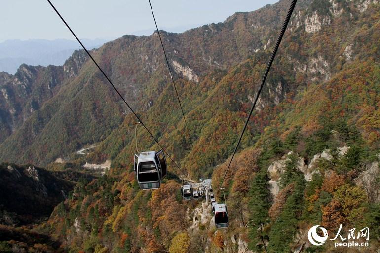 风景区是中国南阳伏牛山世界地质公园的核心区域,景区观赏面积为18万
