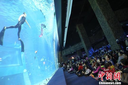 """全球规模最大的室内空中极地海洋馆——""""广州正佳极地海洋世界""""猴"""