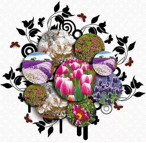 青海旅游 新疆首届春博会将在吐鲁番进行