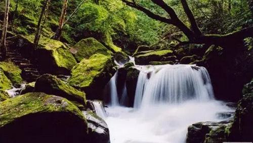 壁纸 风景 旅游 瀑布 山水 桌面 500_283