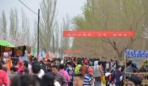 新疆旅游杏花香,美景春彩在新疆