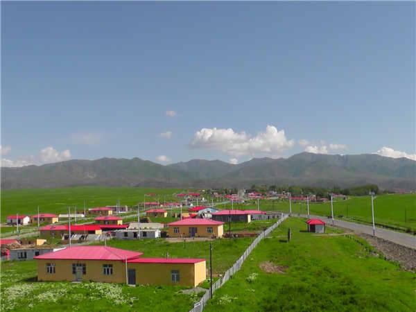 一、基本情况 窝依加依劳牧场建于1957年,2001年与也克苏牧场合并。全场总面积841平方公里, 1198户4796人,由汉、哈、回、柯尔克族等14个少数民族组成,少数民族占到全场总人口的94%。管委下辖9个村队,有7个牧业村队,2个农业村队,其中,铁列克提村位于塔城市北40公里,塔尔巴哈台前山,是窝依加依劳牧场的春秋牧场,该村357户1157人,由哈萨克、柯尔克孜等6个民族组成,其中:哈萨克族763人,占全村总人口的66%;该村以草原观光畜牧业为主导产业,共有旱田地3.
