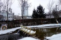 """青海多地出现降雪降温天气 西宁""""披""""银装"""