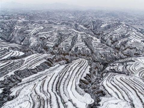 黄土高原降春雪 黑白分明如画卷