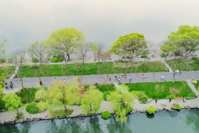 春色满园西湖景