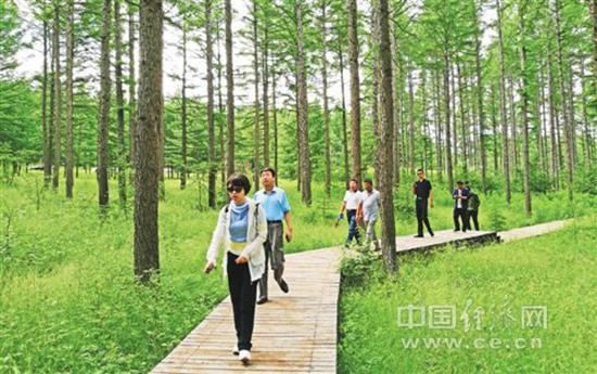 游客在塞罕坝国家森林公园里游玩。 黄俊毅摄