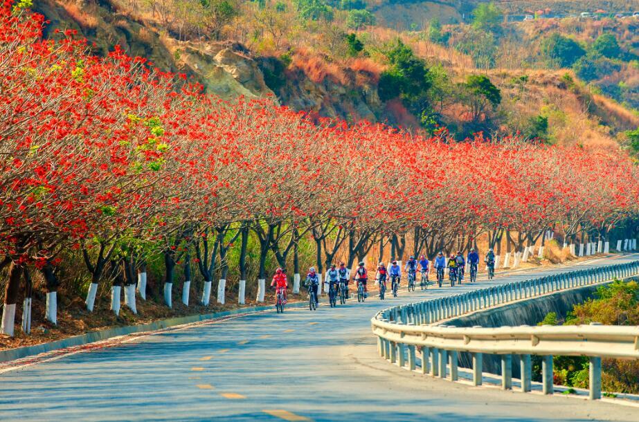 北京到南昌火车时刻表杭州汽车站电话,河北旅游它们一定不能在景区内随意丢弃