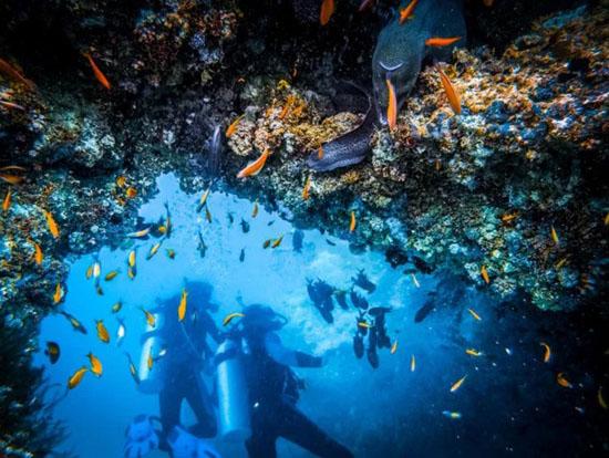 旅行时我们应该如何选择出海项目?