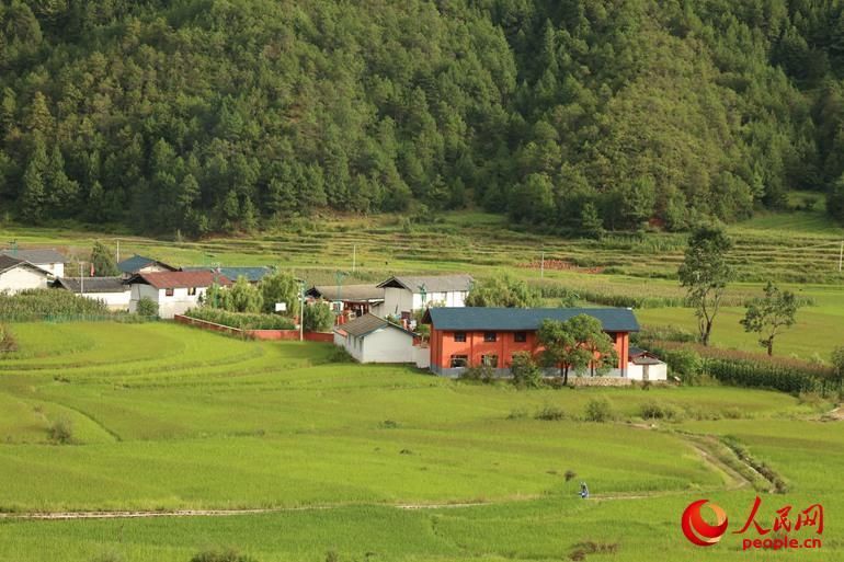 攀天阁湿地四周则是傈僳族、普米族、纳西族、藏族的村庄,就像一圈锅边粑粑一样贴在四周的松林里,这样的村落集中了建筑、服饰、饮食、劳动文化的各种特征。(人民网/杨僧宇摄)