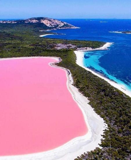 西澳洲旅游胜地粉红湖变蓝十载科学家声称有方法恢复