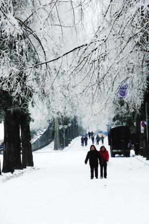 下雪风景唯美意境图唯美意境动漫风景图英伦风景唯美意境图; 以赏雪的
