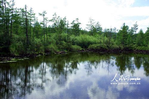 冯河公园的风景立春的图片