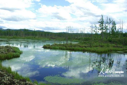 镶嵌在雄伟瑰丽,林木葱茏的高山之巅;合围池畔的松桦,携着蓝天白云