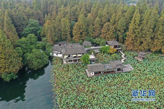 (环境)(1)杭州西湖:秋色淡染