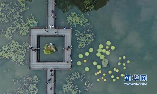 (环境)(3)杭州西湖:秋色淡染